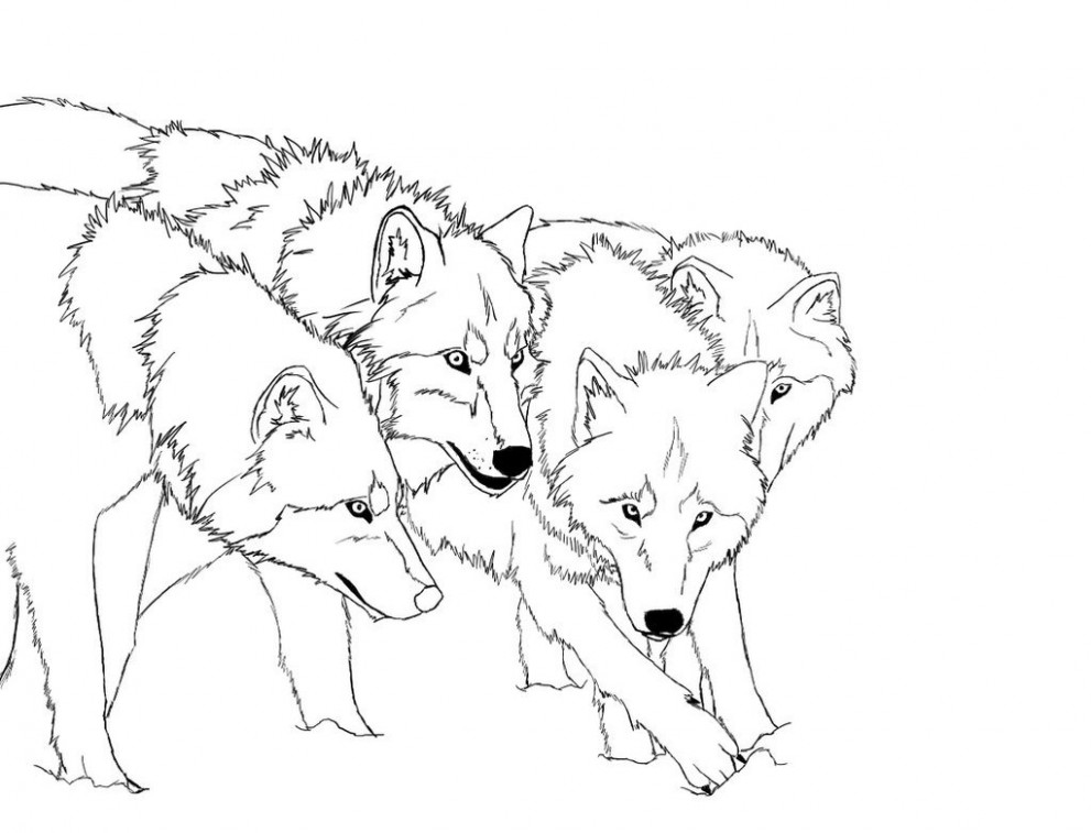 Free Printable Wolf Coloring Pages For Kids – Christmas Wolf Coloring Pages