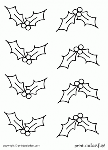 Holly coloring page – Print. Color