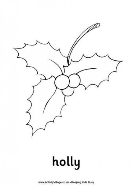 Holly Colouring Pages
