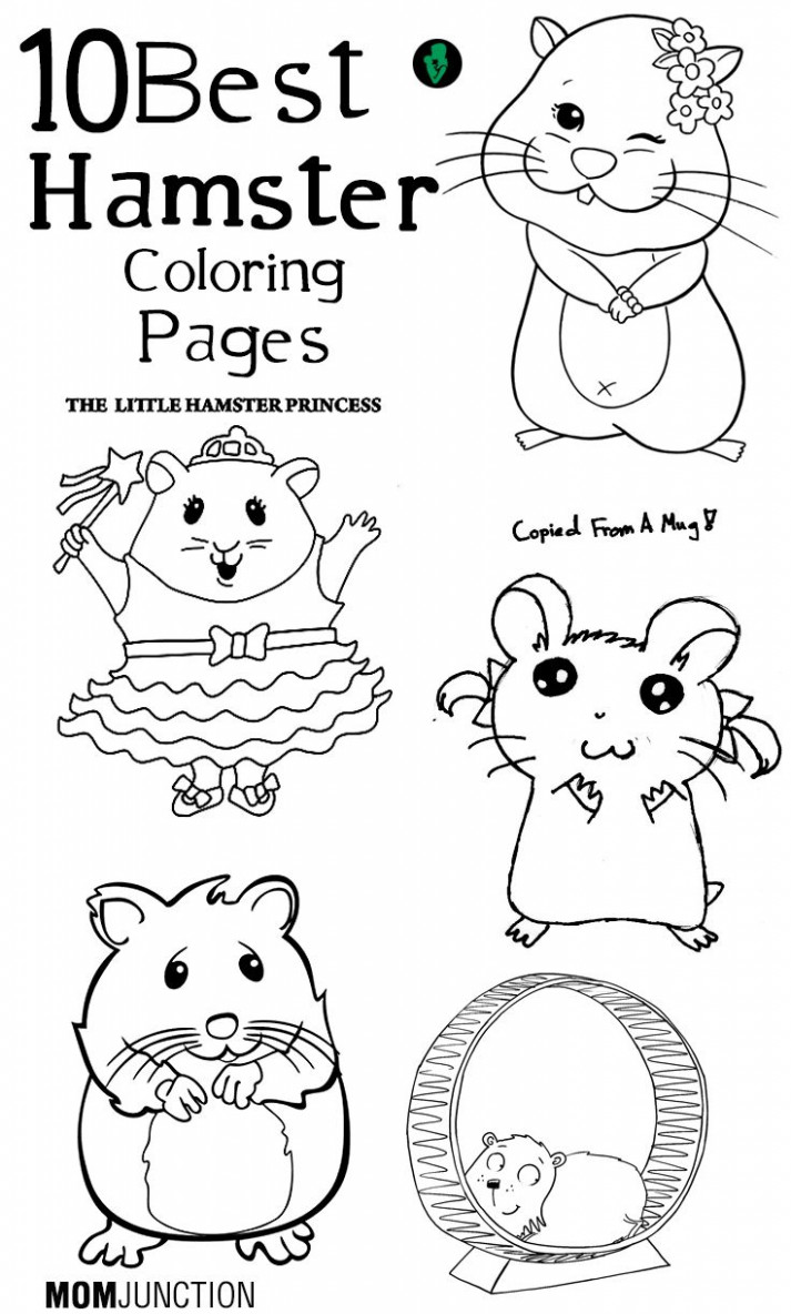 Pinterest – Christmas Hamster Coloring Pages