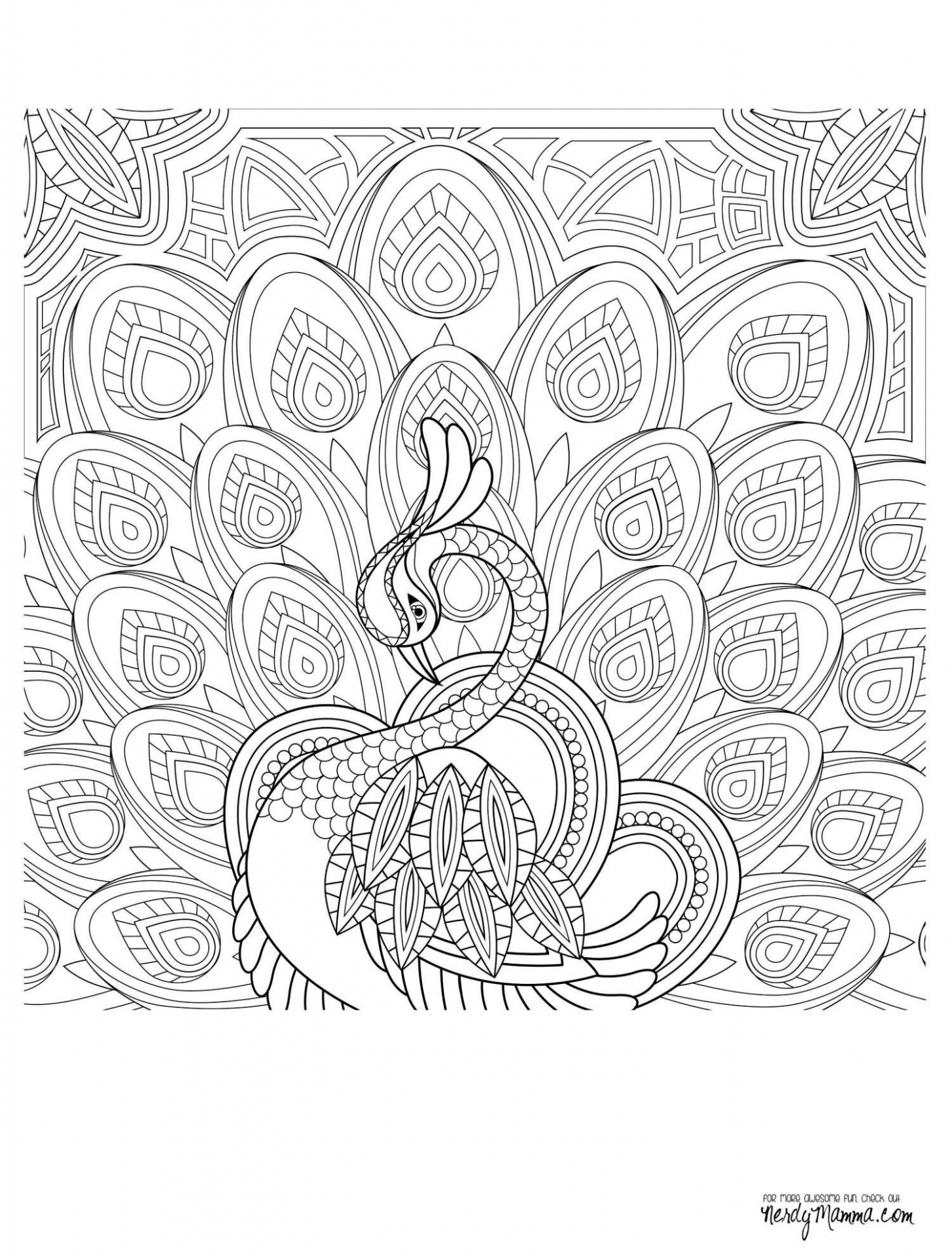 Thru The Bible Coloring Pages | Freshcols