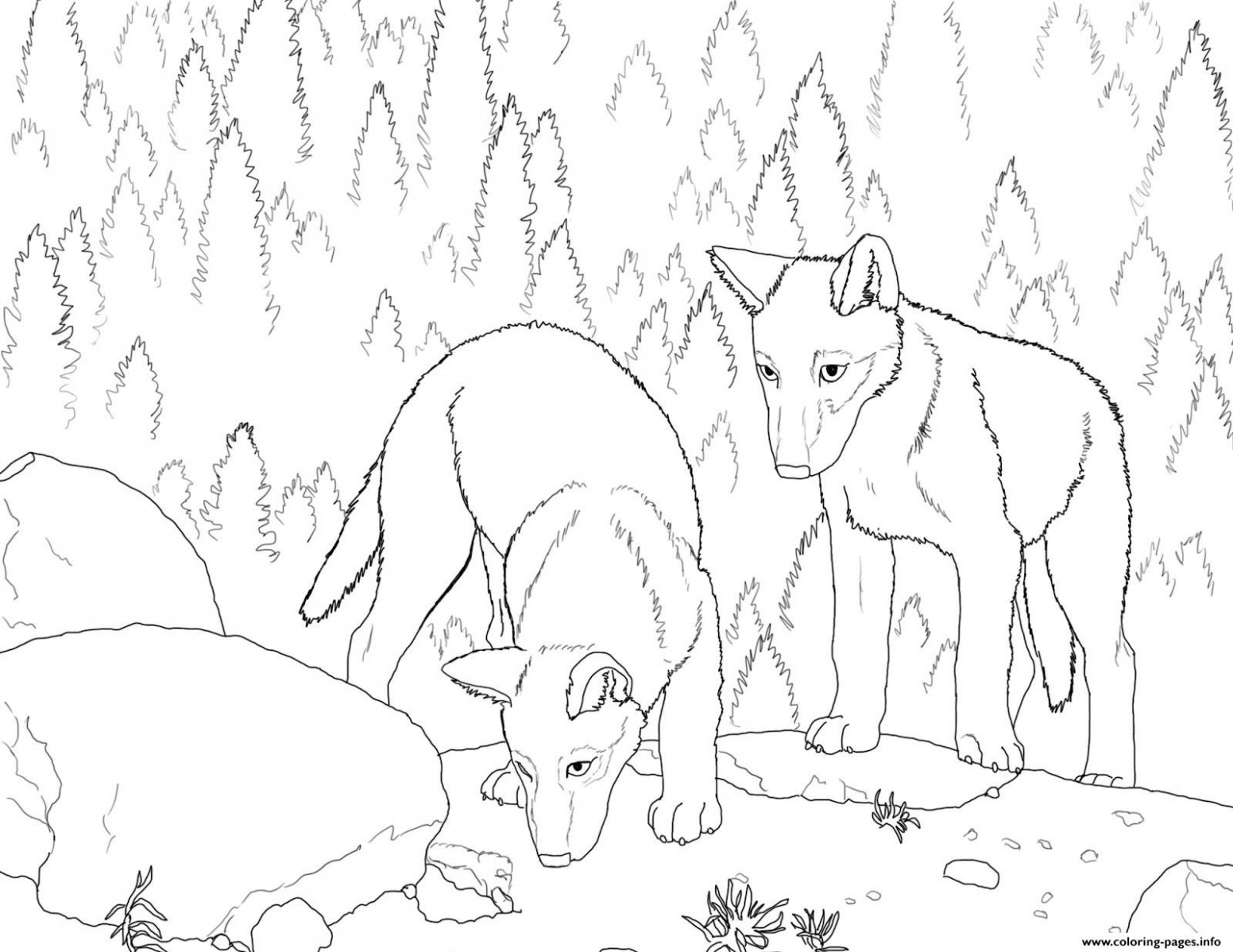 Wolf S Pup Coloring Pages Printable – Christmas Wolf Coloring Pages