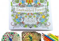 An Inky Enchanted Forest Treasure Hunt and Coloring Book By Johanna ..