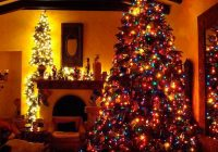 Christmas Colored Lights With Fraser Fir Tree The Garden Gates