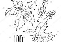Christmas Coloring Pages Holly Leaves With Collection Graphic Berries Stock Vector
