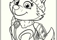 Christmas Coloring Pages Paw Patrol With Lovely Printable Crafts Pinterest