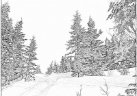 Christmas Landscape Coloring Pages With Winter Printable Free Tree
