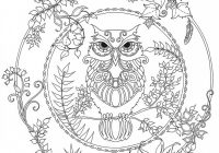 Chronicle Books Enchanted Forest Coloring Book | JOANN – enchanted forest coloring book
