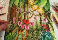 MAGICAL JUNGLE | Adult Coloring Book by Johanna Basford | Coloring ..