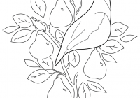 Printable 12 Days Of Christmas Coloring Pages With The Book Scholastic Parents