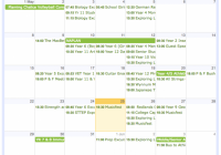 Term dates  – 2019 School Year Calendar Victoria