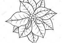 Vintage Christmas Coloring Books With Poinsettia Isolated Flower Vector Artwork Black